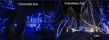 columbus zoo christmas lights violet s silver lining zoo christmas lights galore
