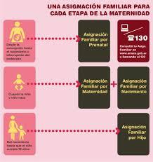 progresar anses hasta cuando tengo tiempo de presentar el formulario una asignación familiar para cada etapa de la maternidad anses