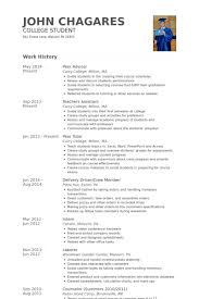 Sample Resume For Delivery Driver by Peer Advisor Resume Samples Visualcv Resume Samples Database