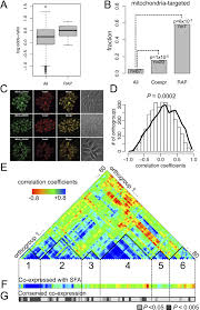 chromerid genomes reveal the evolutionary path from photosynthetic