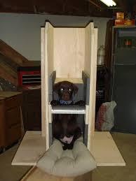 canine megaesophagus monday february 20 2012
