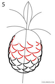 how to draw a pineapple step by step pictures cool2bkids