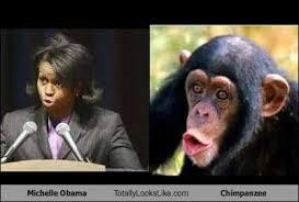 Chimp Meme - michelle obama totally looks like chimpanzee cheezburger funny