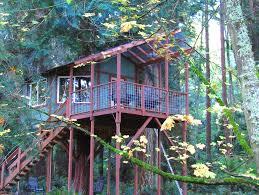 ideas for tree houses for girls best house design