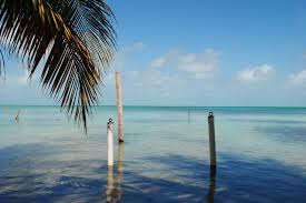 the top reasons you should purchase a home in belize belize real