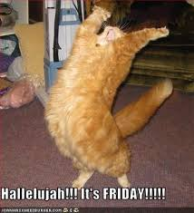 Its Friday Funny Meme - hallelujah it s friday cheezburger funny memes funny