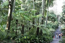 What Time Does The Botanical Gardens Close by Royal Botanic Gardens Victoria Wikipedia