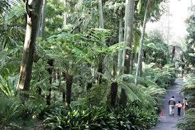 Botanical Garden Chapel Hill by Royal Botanic Gardens Victoria Wikipedia