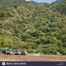 jurassic world jeep 29 jurassic park jeep stock photos u0026 jurassic park jeep stock images