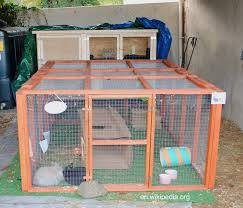 Rabbit Hutch Indoor The Bunny Hut Indoor Rabbit Cages The Good The Bad And The Ugly