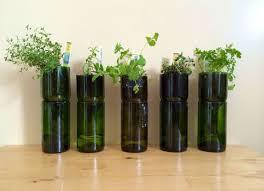 home decoration with plants easy indoor gardening ideas price list biz