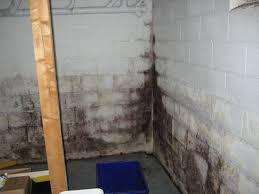 basement leaking basement walls a1 concrete leveling throughout