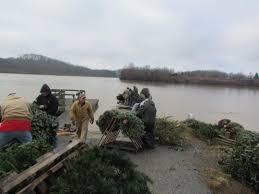 kentucky department of fish u0026 wildlife christmas tree recycling 2016