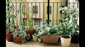 Apartment Patio Garden Ideas Garden Ideas Apartment Patio Garden