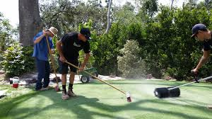 change your backyard into the perfect putting green