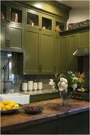 awesome olive green kitchen accessories