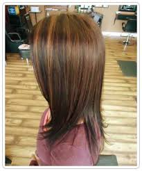 highlighting fine hair highlighting fine hair hairs picture gallery