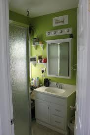 Lime Green Bathroom Ideas A Carpetbagger U0027s Tale