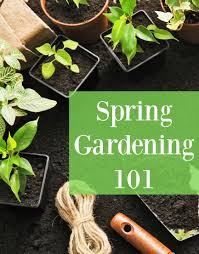 spring gardening 101 save on veggies