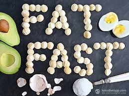 complete guide to fat fast the ketodiet blog