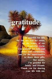 87 best grateful images on awesome quotes gratitude