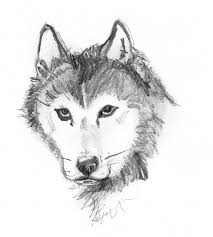 photo sketch sketches pencil drawings of dogs