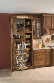 Inside Kitchen Cabinet Storage Awesome Kitchen Cabinet Storage Ideas