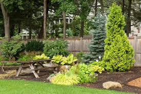 Home Vegetable Gardens by 100 Pictures Of Backyard Vegetable Gardens Garden Ideas Home