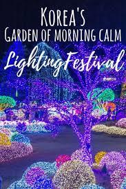 best 25 festival lights ideas on pinterest diy christmas light