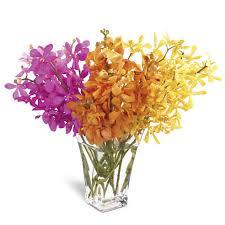 Orchid Bouquet Vibrant Mokara Orchids Bouquet At Send Flowers