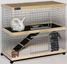Build Your Own Rabbit Hutch Plans Best 25 Indoor Rabbit Cage Ideas On Pinterest Indoor Rabbit