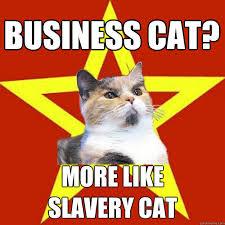 Cat Meme Pictures - lenin cat know your meme