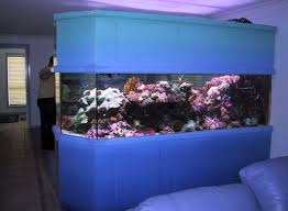 designer aquarium kuala lumpur aquarium fish tank designer www topaquarium