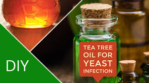 Tea Tree Oil Hair Loss Tea Tree Oil To Cure Yeast Infection
