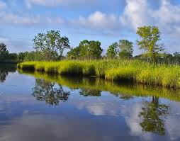 South Carolina rivers images Ace basin ashepoo combahee and edisto rivers south carolina sc jpg