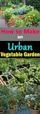 How To Make A Raised Vegetable Garden by How To Make An Urban Vegetable Garden City Vegetable Garden
