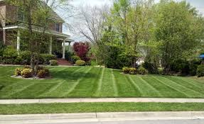 proper mowing height mjs lawn proper mowing height virginia
