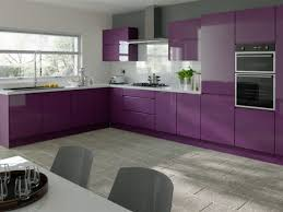 Purple Kitchen Countertops 75 Great Contemporary High Gloss Grey Kitchen Cabinets Light