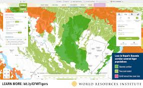 Russian Boreal Forest Disturbance Maps by We Can Save Tigers From Extinction With A Little Help From