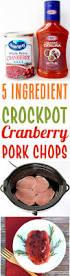best 25 good pork chop recipes ideas on pinterest easy pork