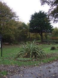 Barnhill Rock Garden Barnhill Rock Gardens Jthomas Geograph Britain And Ireland