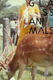 Backyard Animals Lyrics Hearts Don U0027t Break By Rust Belt Jessie Issuu