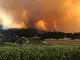 Wildfire Ft Drake by Marin County On Flipboard