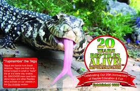 Backyard Reptiles Our News Reptiles Alive