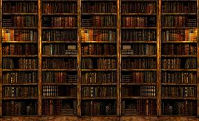 wallpaper that looks like bookshelves bookshelf wallpaper gives an 8 forum4d com