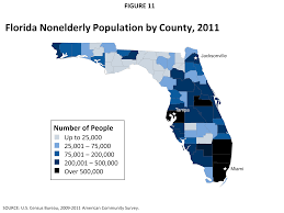 the florida health care landscape the henry j kaiser family