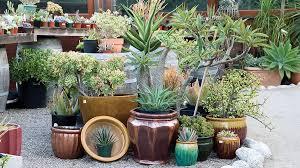 5 garden decorating ideas sunset