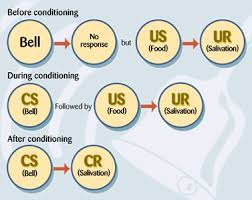 24 best psychology classical conditioning images on pinterest