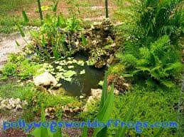 Frog Pond Backyard 45 Best Native Garden Pond Images On Pinterest Garden Ideas