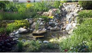 aquascape pond landscaping design with natural stone services